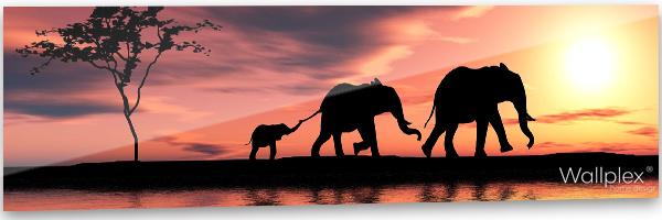 konyhai fali panel safari