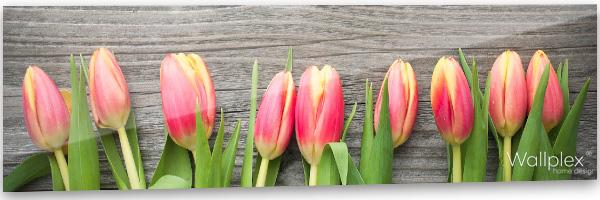 konyhai fali panel tulipánok