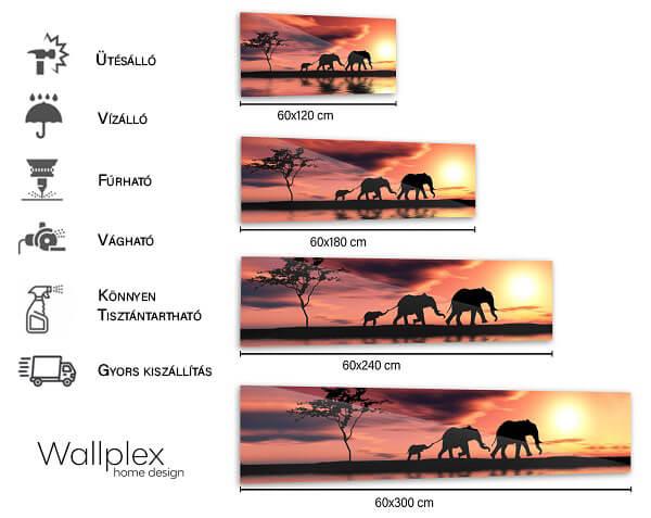 safari mérettábla