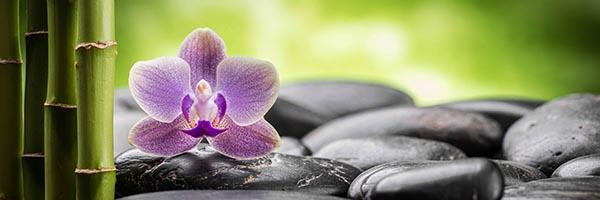 zen konyhapanel