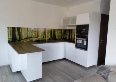 Wallplex konyhapanel erdő